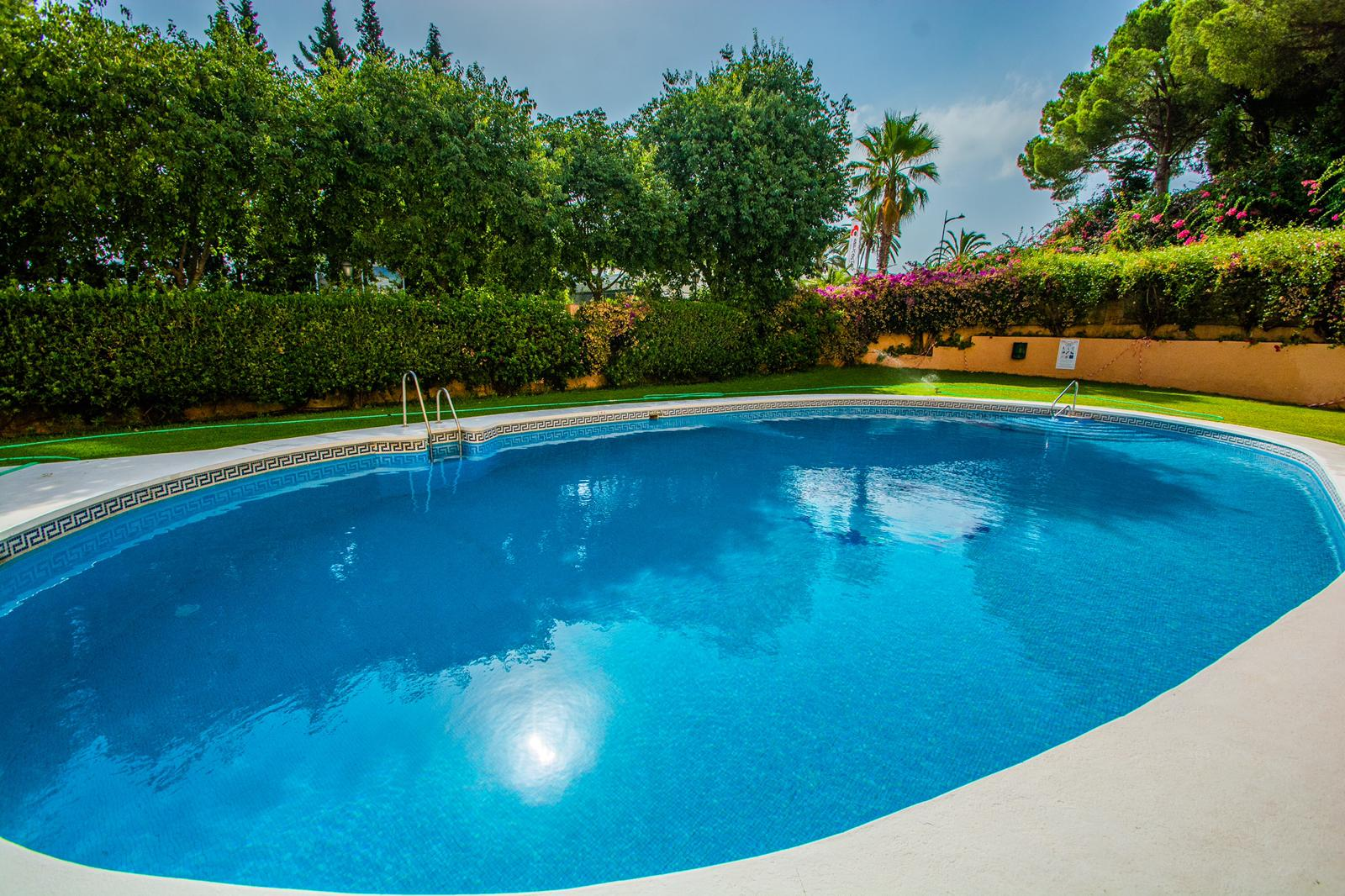 Bargain Apartment – Nueva Andalucia